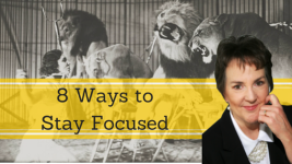 8 Tips on How to Stay Focused